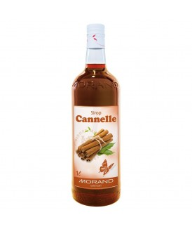 Sirop Morand Cannelle 1/1